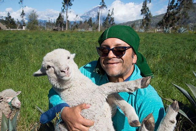 Monday can be amaaaaaazing! 🐑 ❤️ share this cutie (the white one) with someone you love.  #andes #sheep #baby #oveja #tungurahua #baby #farmlife #farm #whomademyfiber #whomademyclothes #green #sustainablefashion