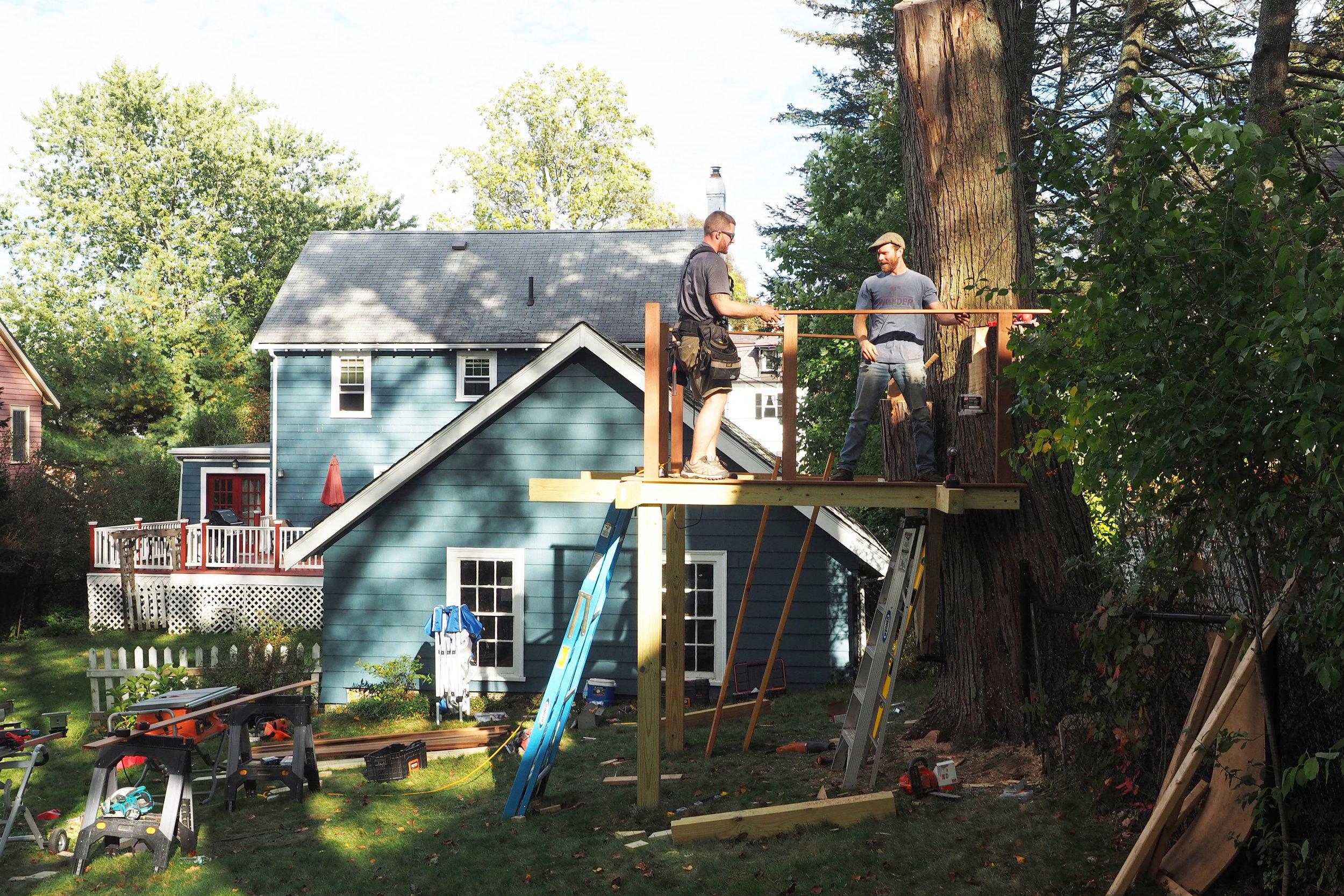 Eddies Tree Treehouses