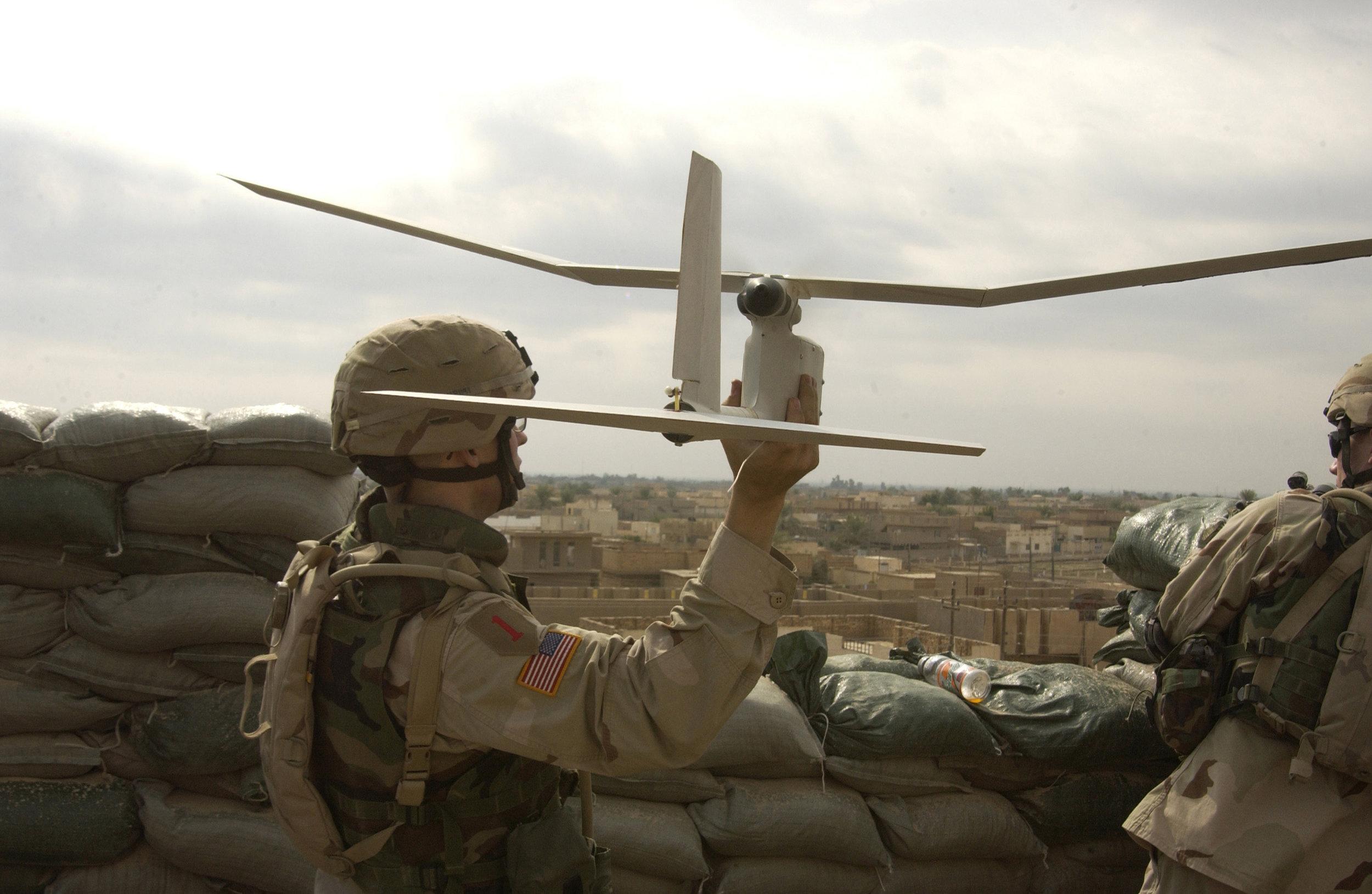 AfghanRaven.jpg