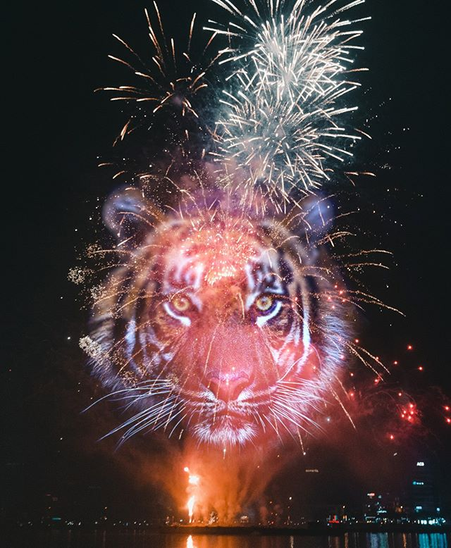 Happy New Years! Keep an eye out for Cosmo's in the sky 👀#CosmoTires ¡Feliz Año Nuevo! Esten atentos a Cosmo's en el cielo! #CosmoTires  #tires #tyres #tiger #newyear #happynewyears #newyearseve #fireworks #2019