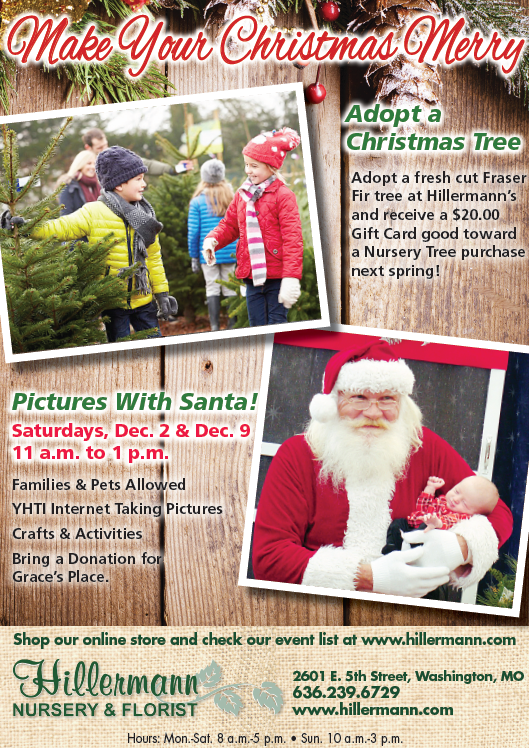 Ad_Nov_29_Trees-Santa_17.png