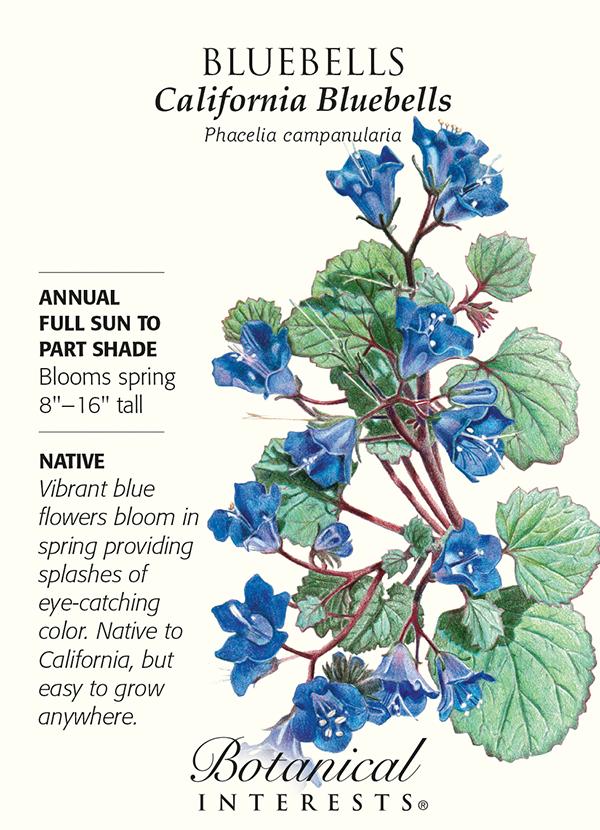 SeedPack_Bluebells_California_BI.jpg