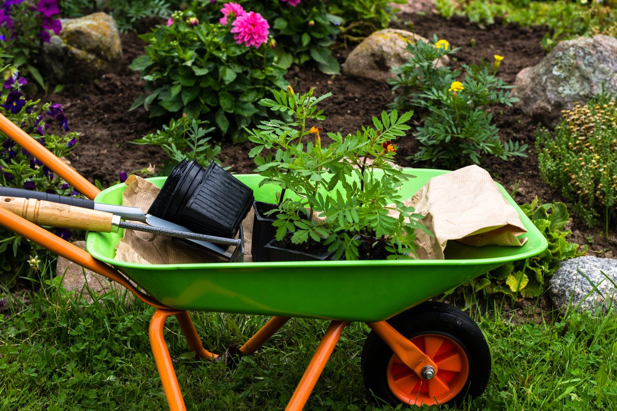 Gardening_Items_Wheelbarrow_w.jpg