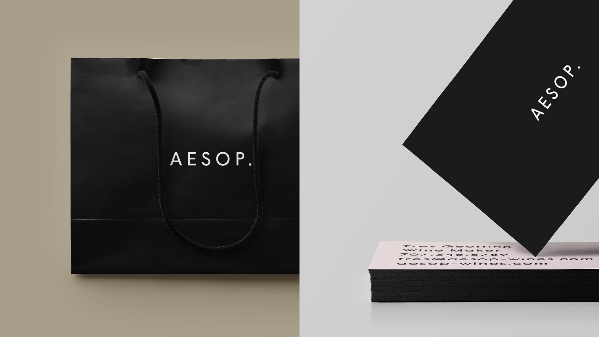 Aesop_System.jpg