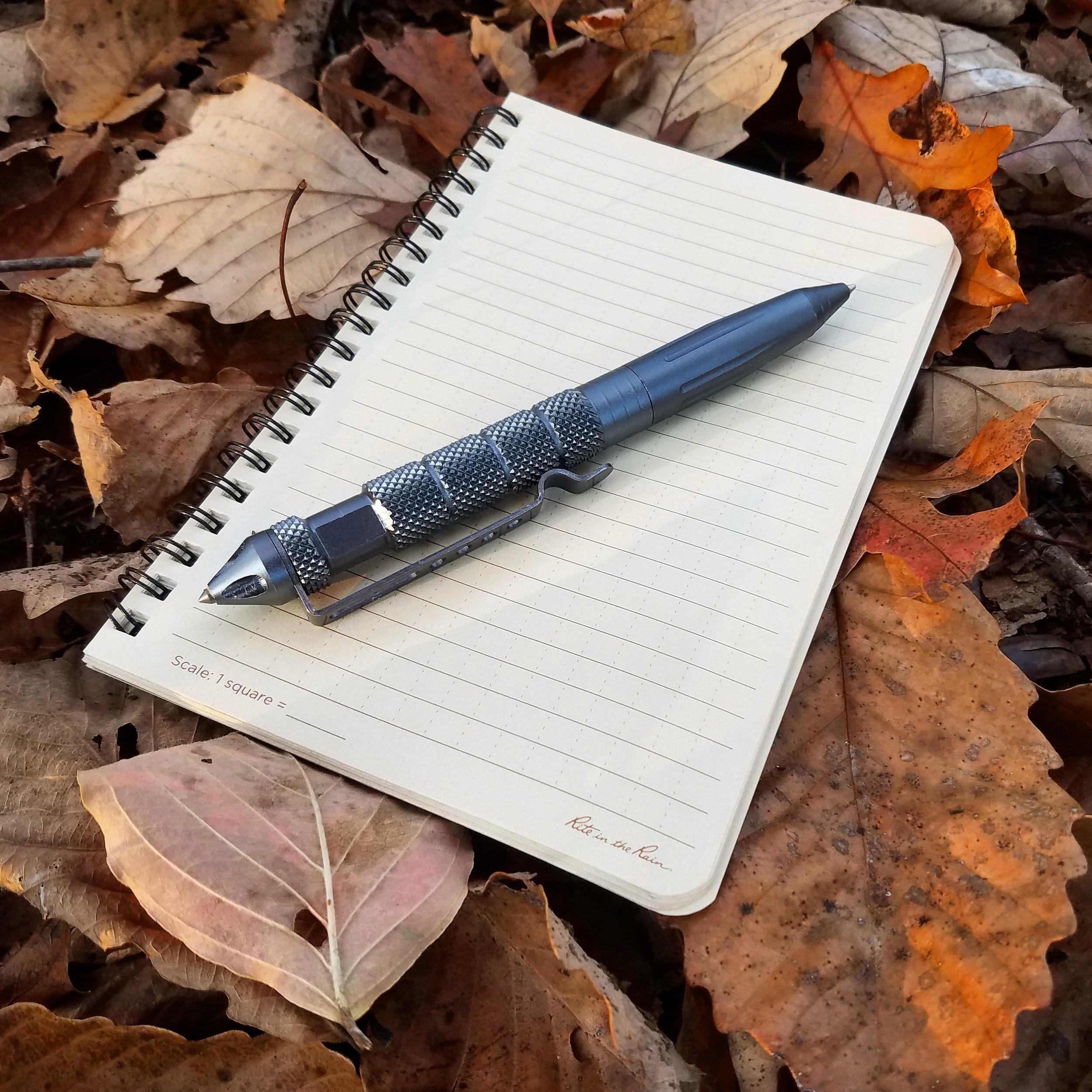 Pen and leaves.jpg