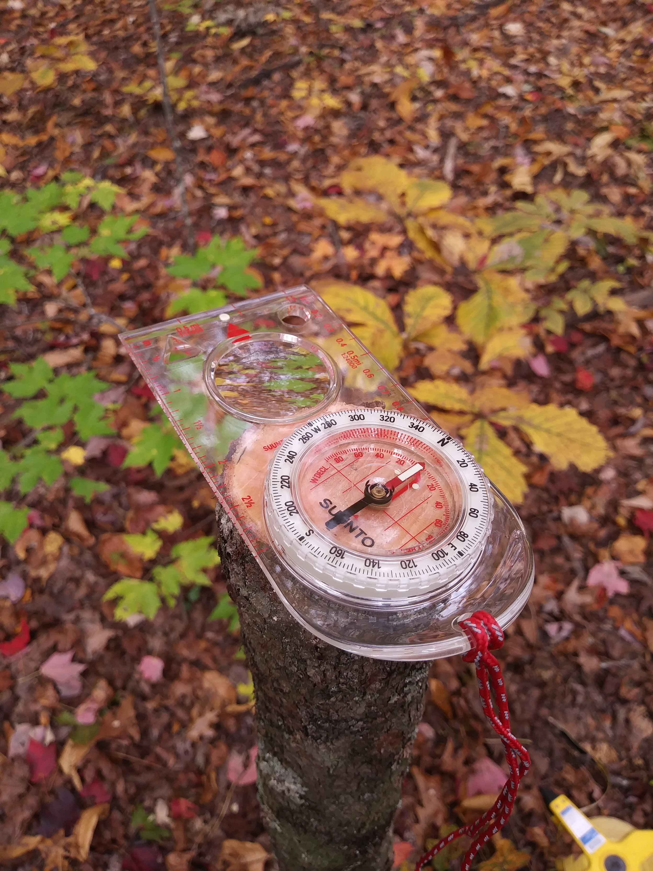 Declination compass.jpg