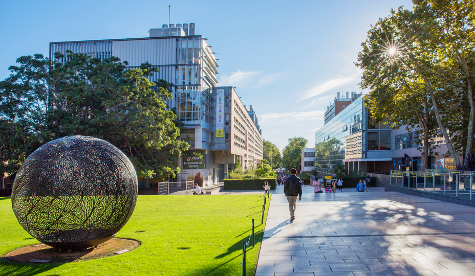 University NSW.png