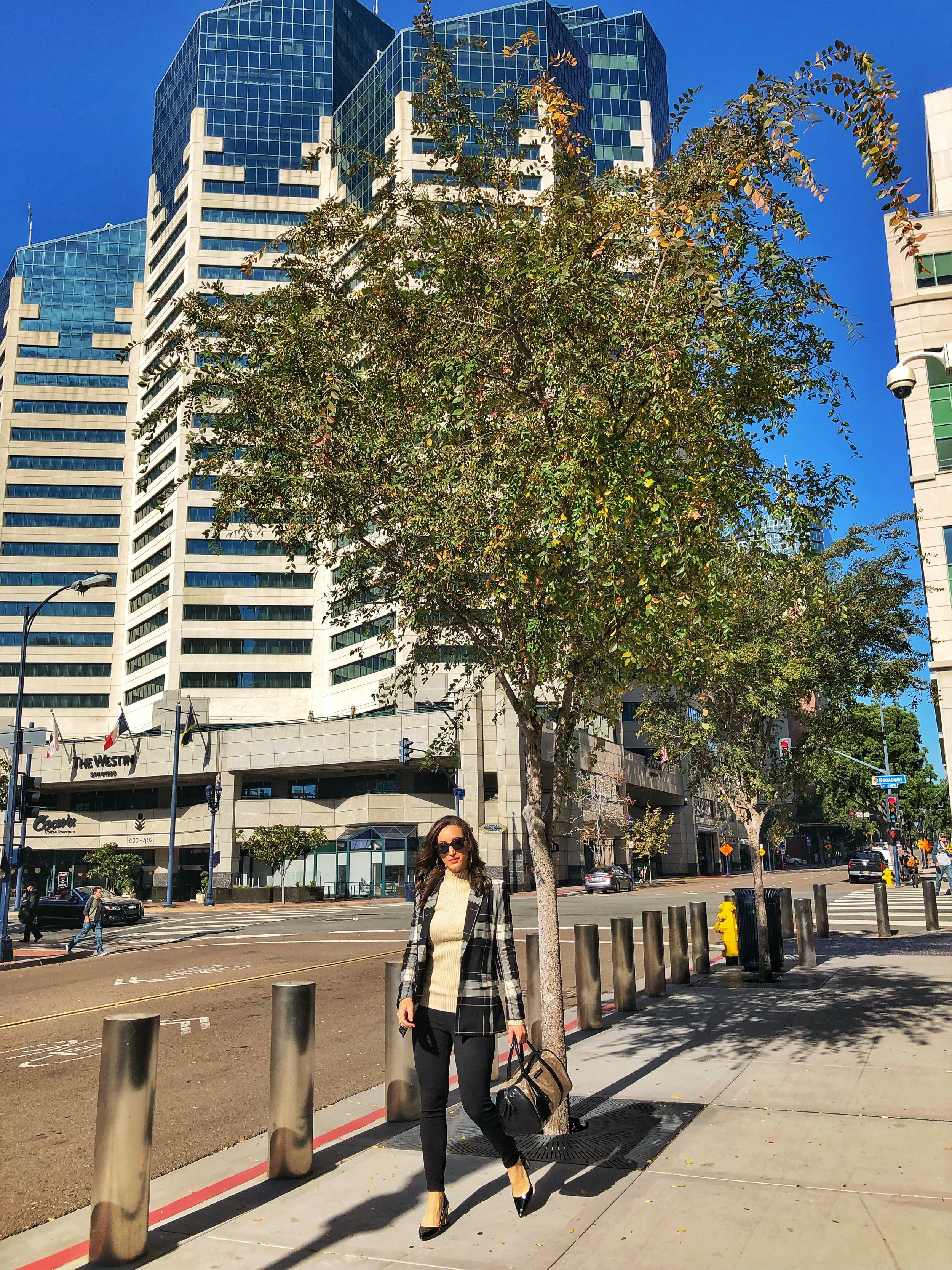 Commuting to work, office style Downtown San Diego, Emerald Plaza Westin Hotel