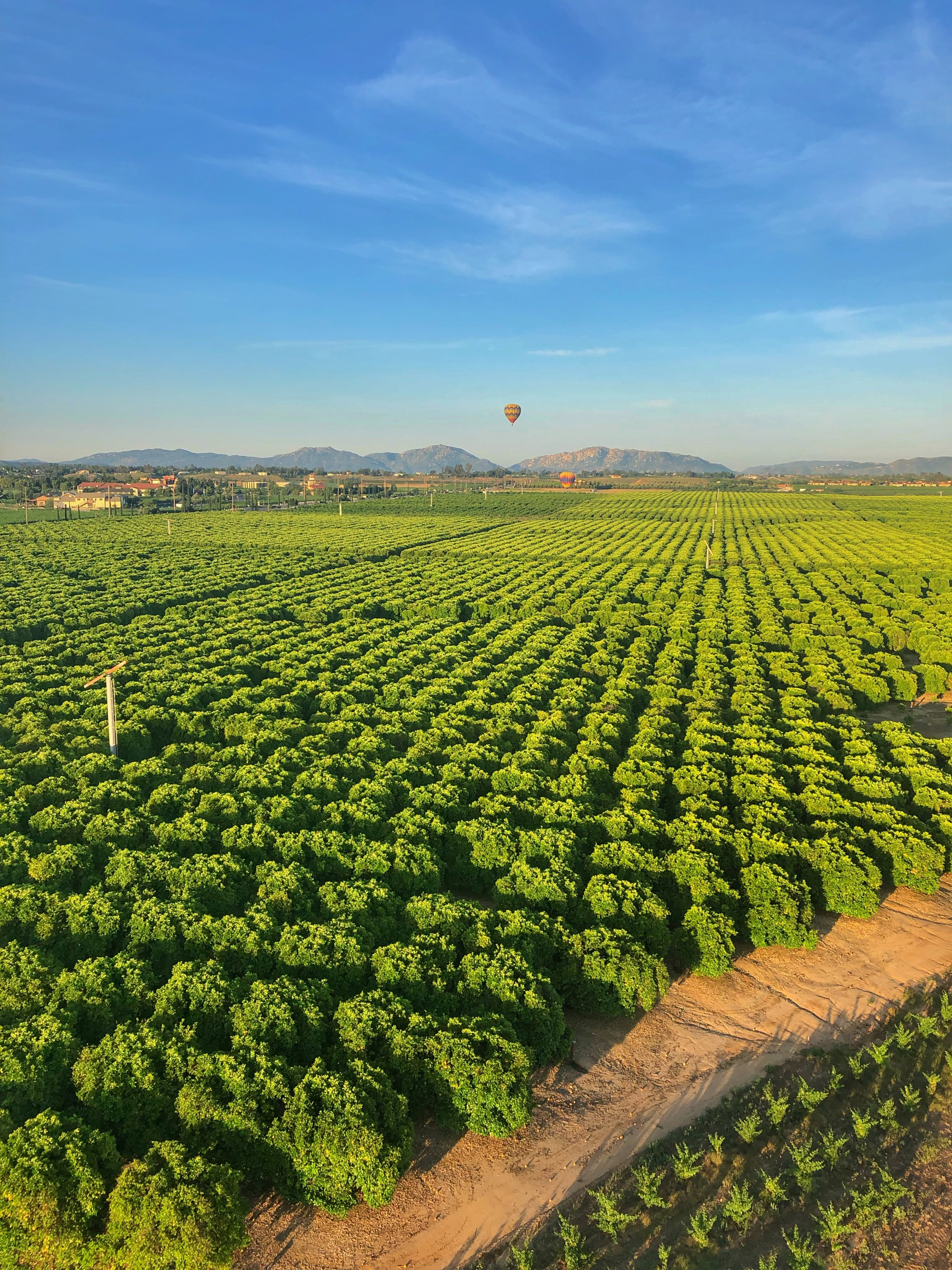 Hot Air Balloon Ride. Monte De Oro Winery, Temecula, California.