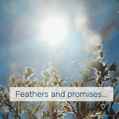 feathers and promises blog.png