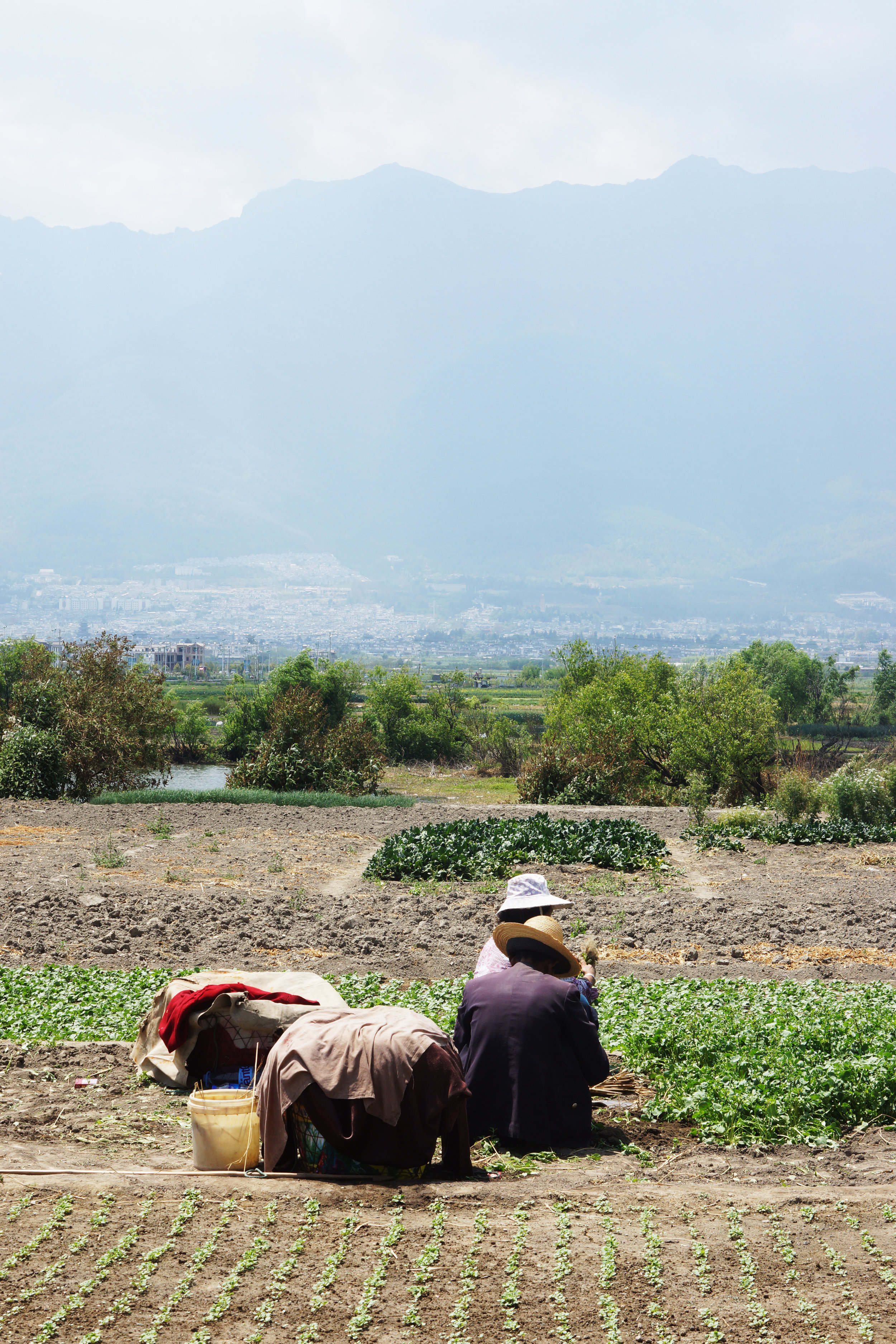 Farmers near Lake Erhai.