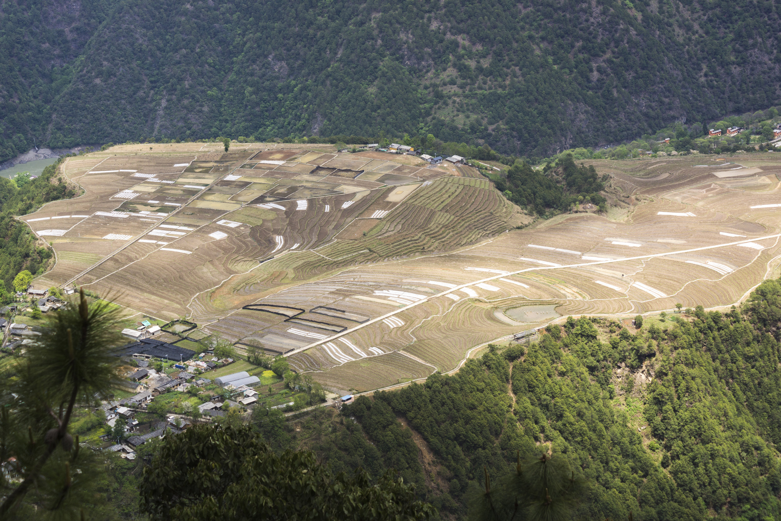 Farmland in the Nujiang Valley's far-north.