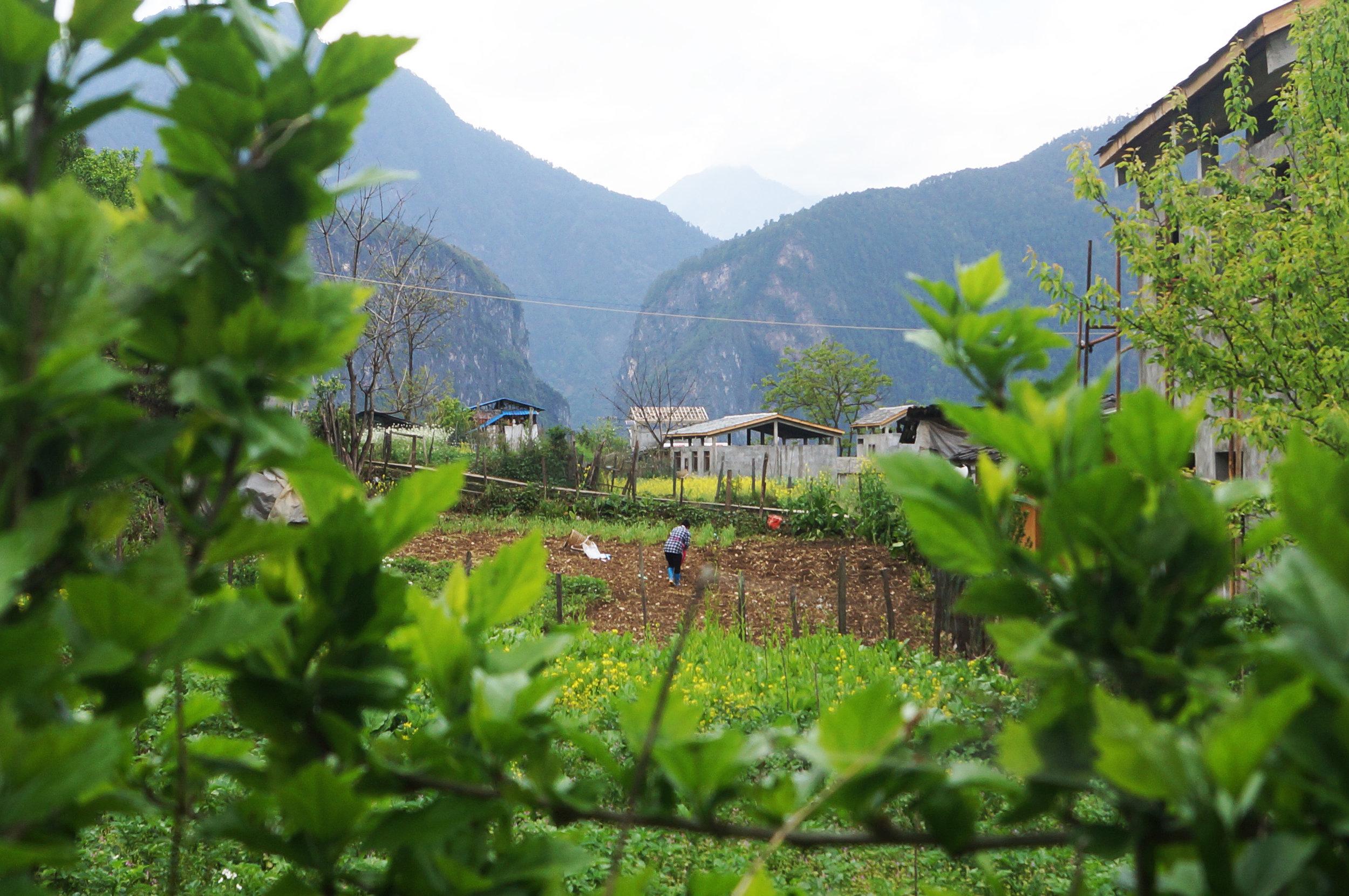 Farmland near Bingzhongluo
