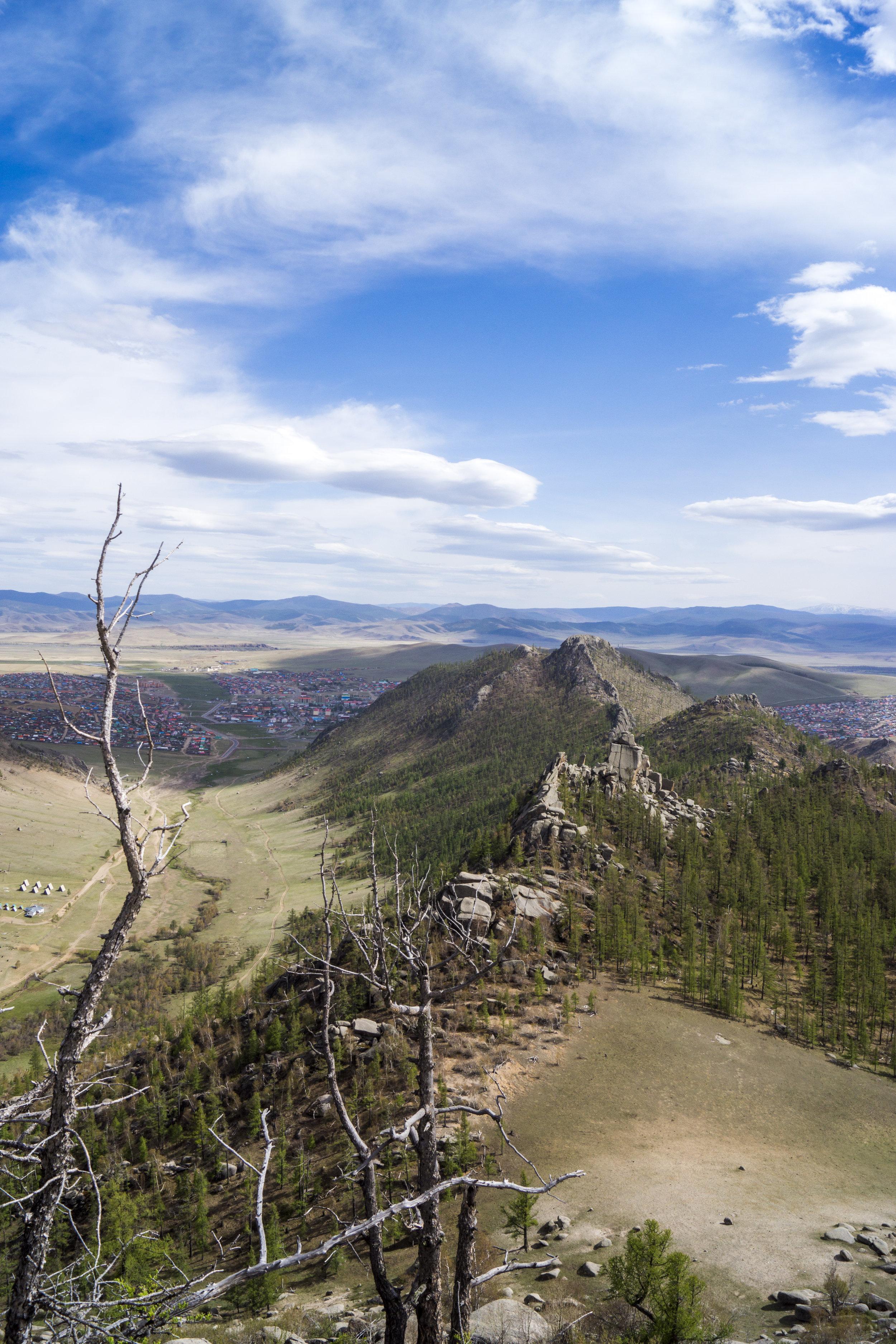 HillsPortrait.jpg