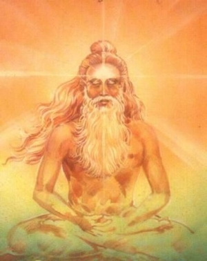 """""""Arise, awake and stop not till the goal is reached."""" - SwamiJi"""