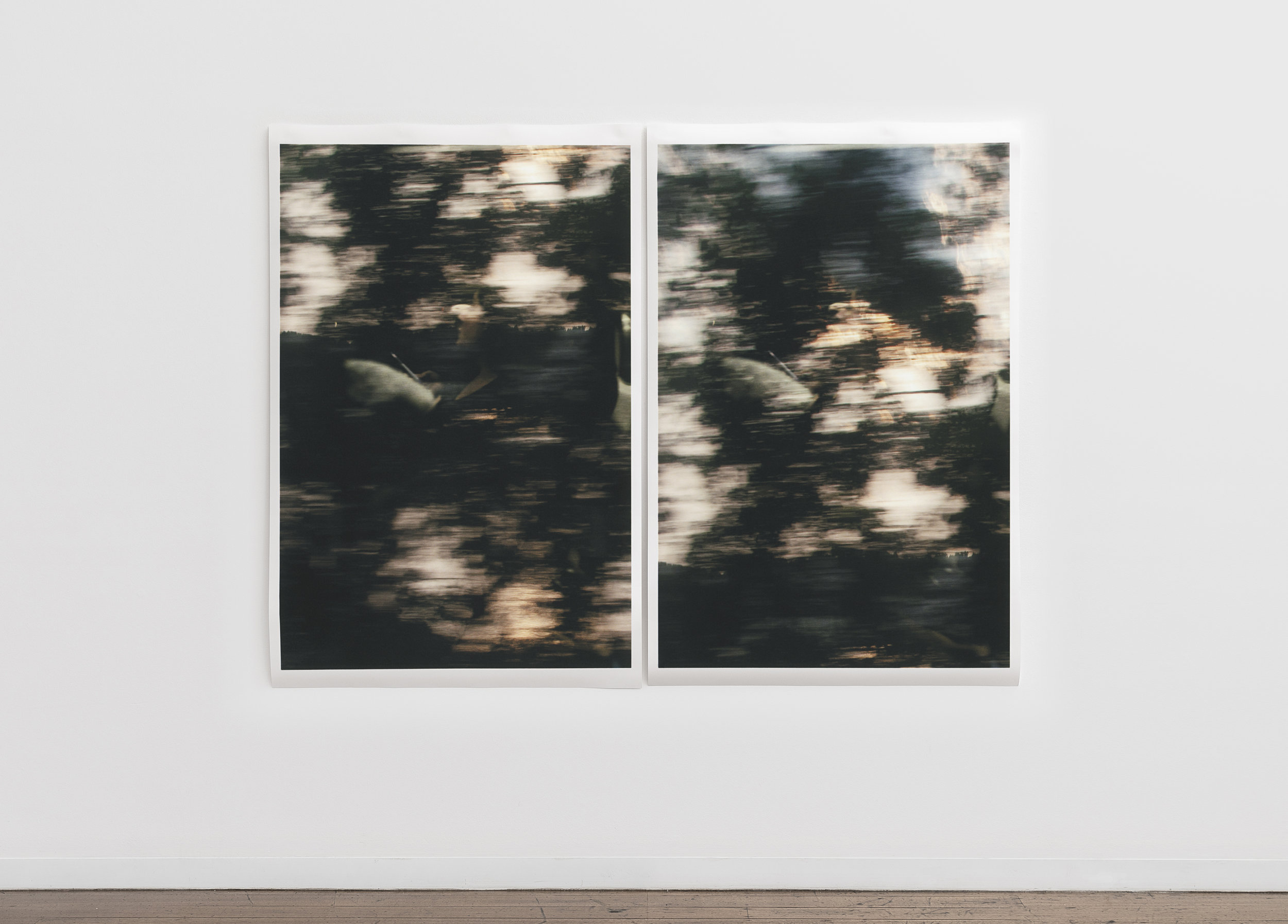"Untitled (figure, glass, landscape / consecutive) , pigment print on paper, diptych, sheet: 168 × 110 cm (66 1/8 × 43 1/4 in), each, framed: 178.9 × 120.2 cm (70 1/2 × 47 3/8 in), each, 178.9 × 240.4 cm (70 1/2 × 94 3/4 in), overall, 2019  Installation view of ""the sacredness of something"" at Arc One Gallery, Melbourne (2019)"