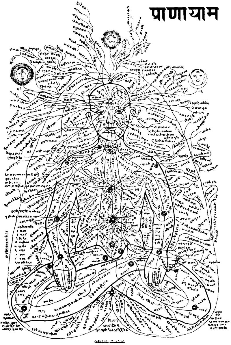 Image: An ancient drawing of the 72,000 Nadis | Meridians and Marmas  | Energy Points