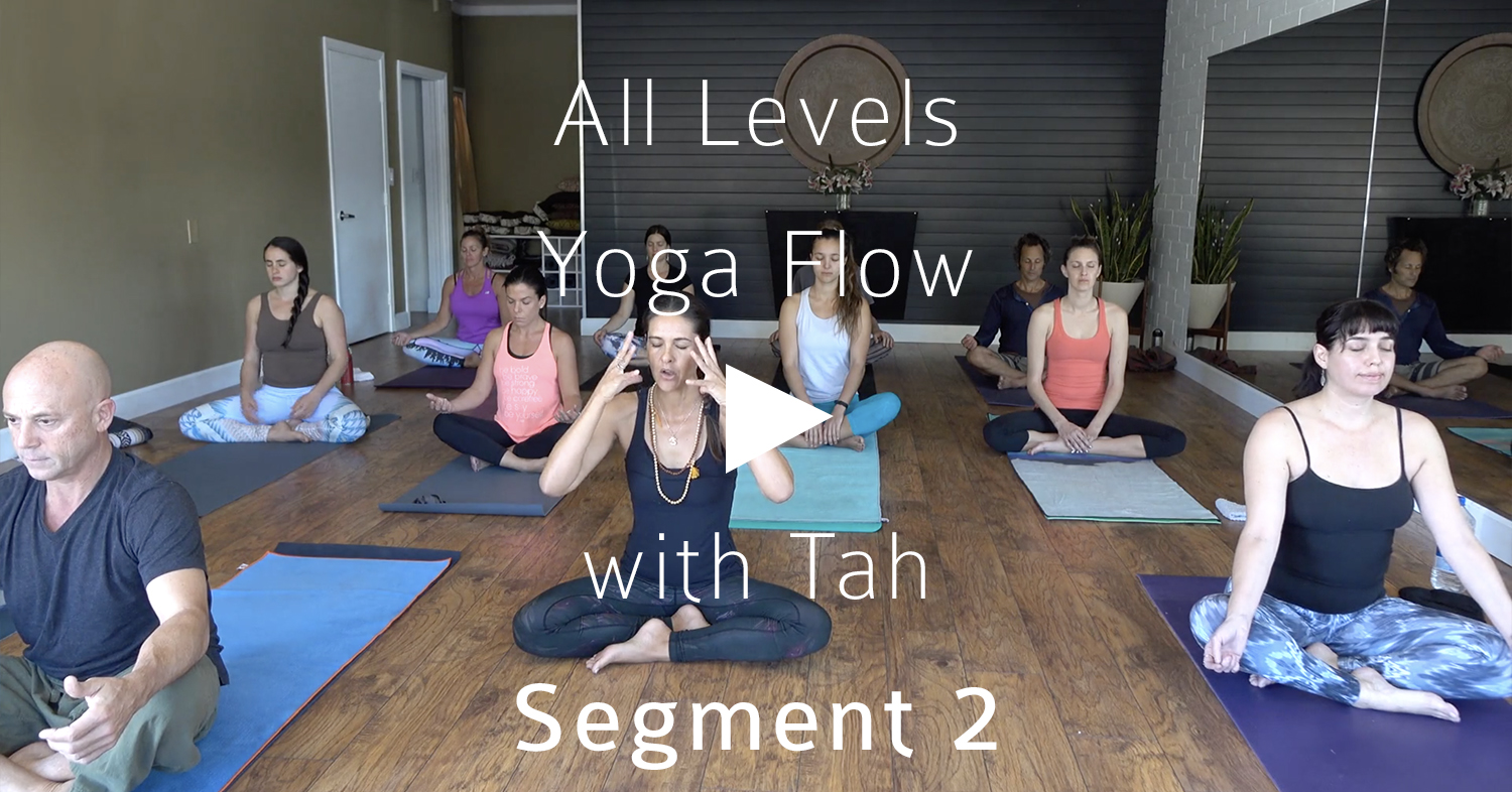 Click to view Segment 2 of an All Levels Yoga Flow with Tah
