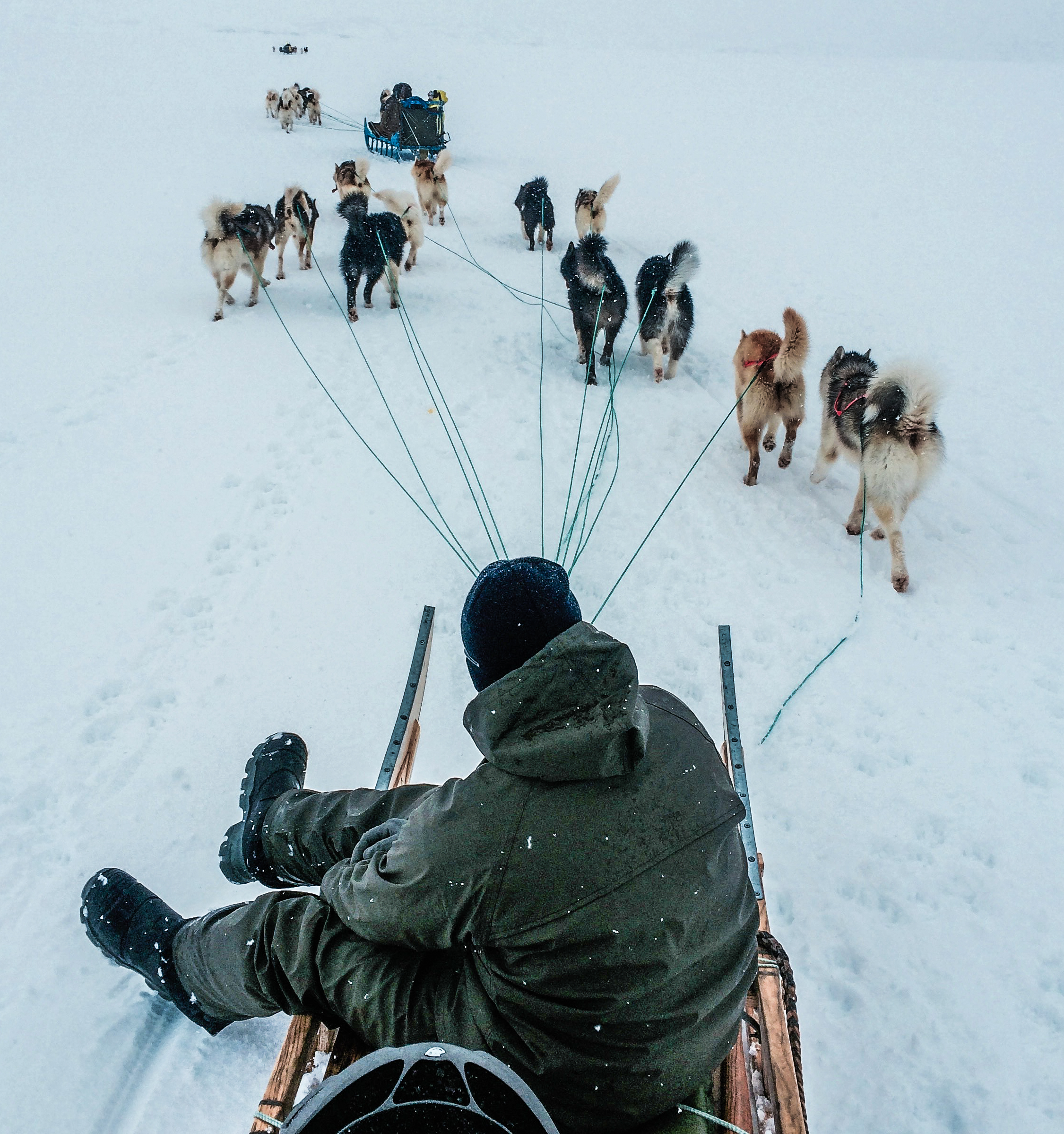 Greenland - A journey inside Inuit hunting culture