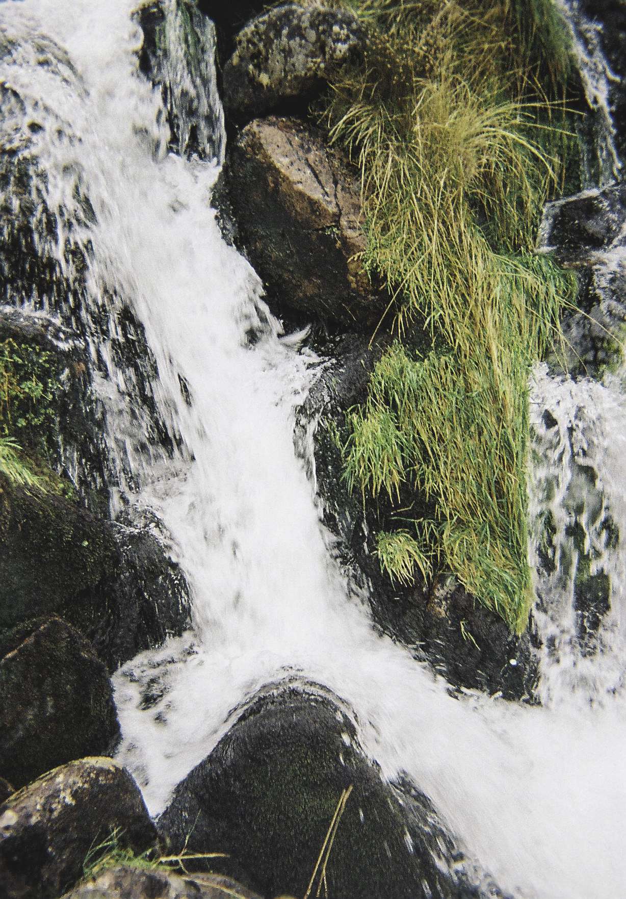 Waterfall and Green.jpg