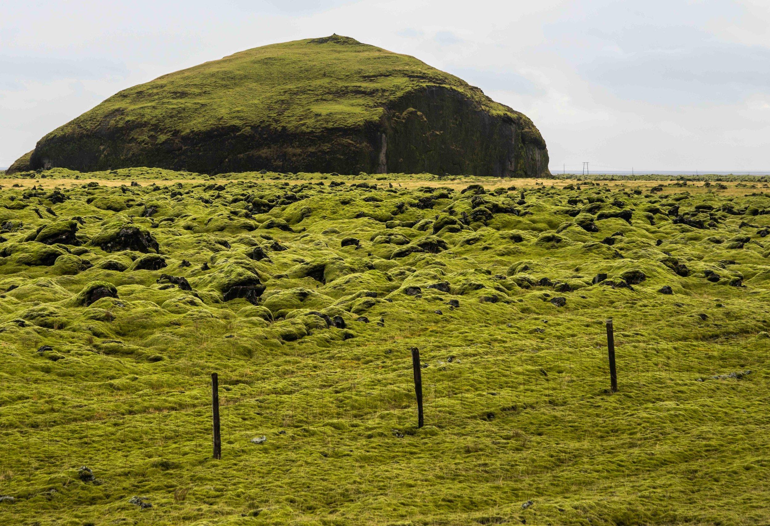 Iceland 86.jpg