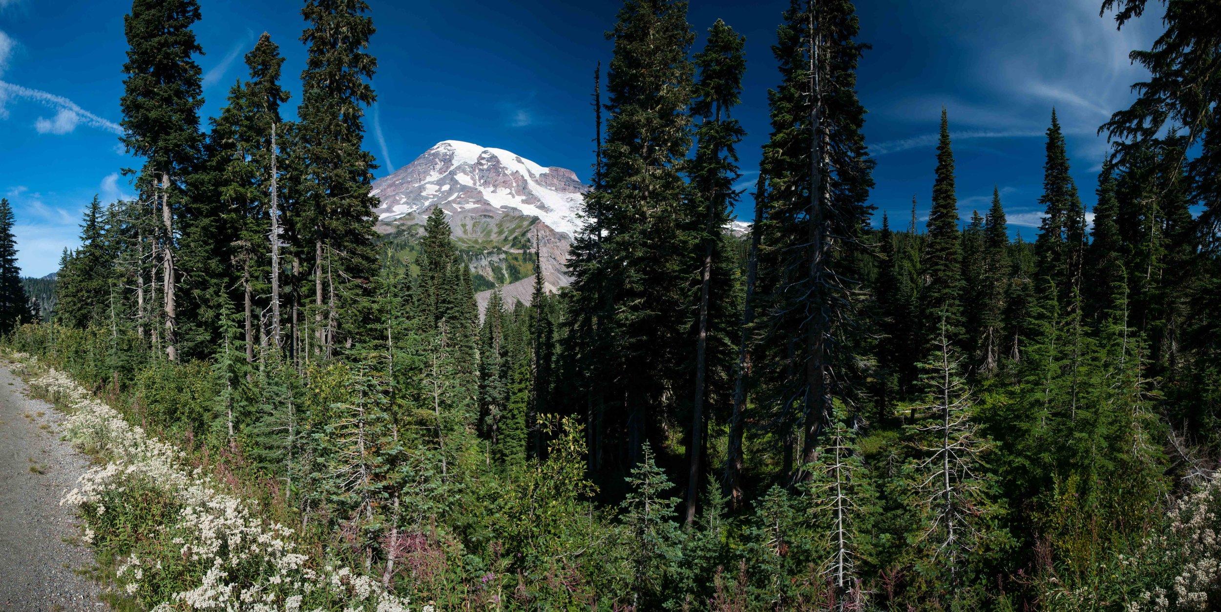 Mt Raineer 1-14.jpg