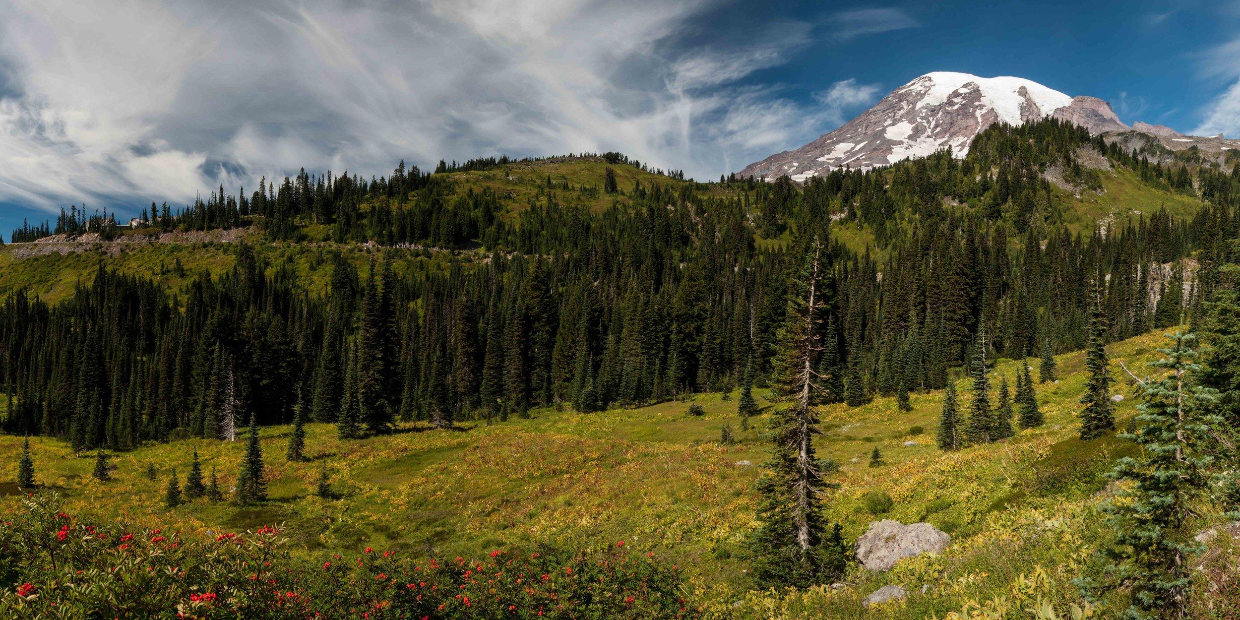 Mt Raineer 1-15.jpg