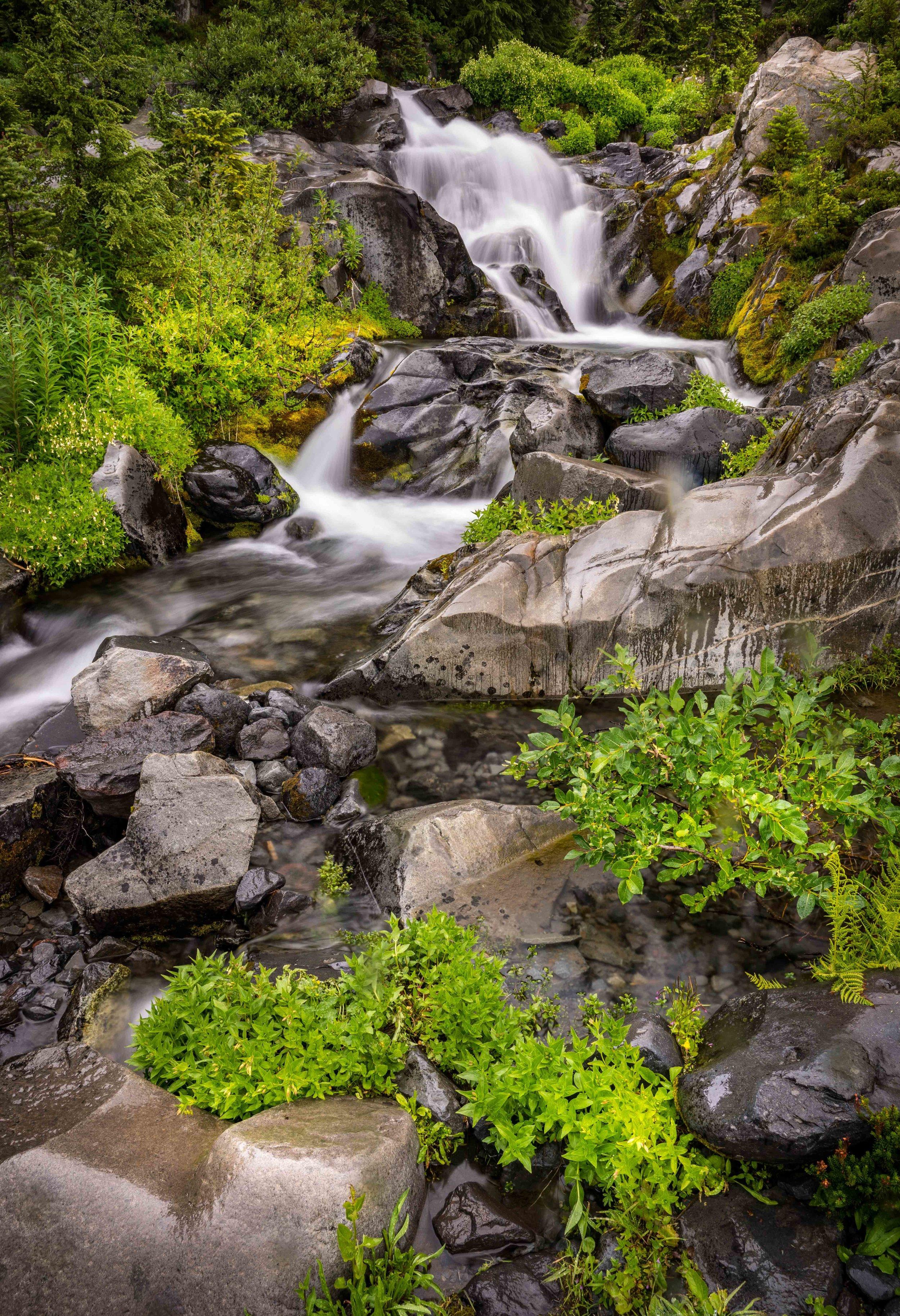 Mt Raineer 20-9.jpg