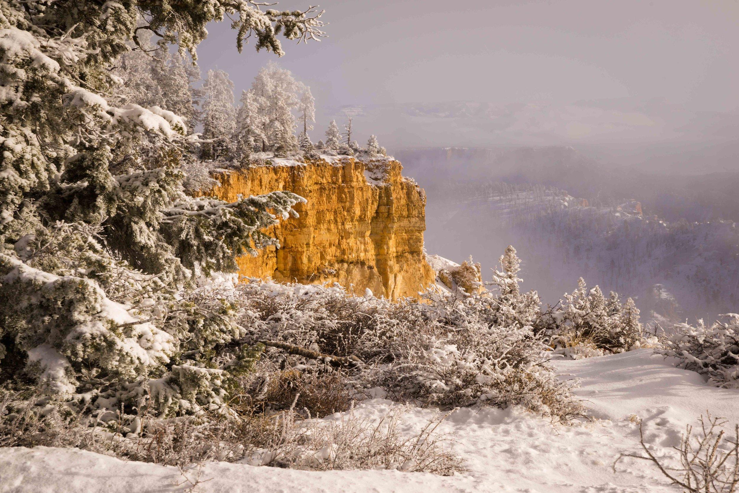 Bryce Canyon_-11.jpg