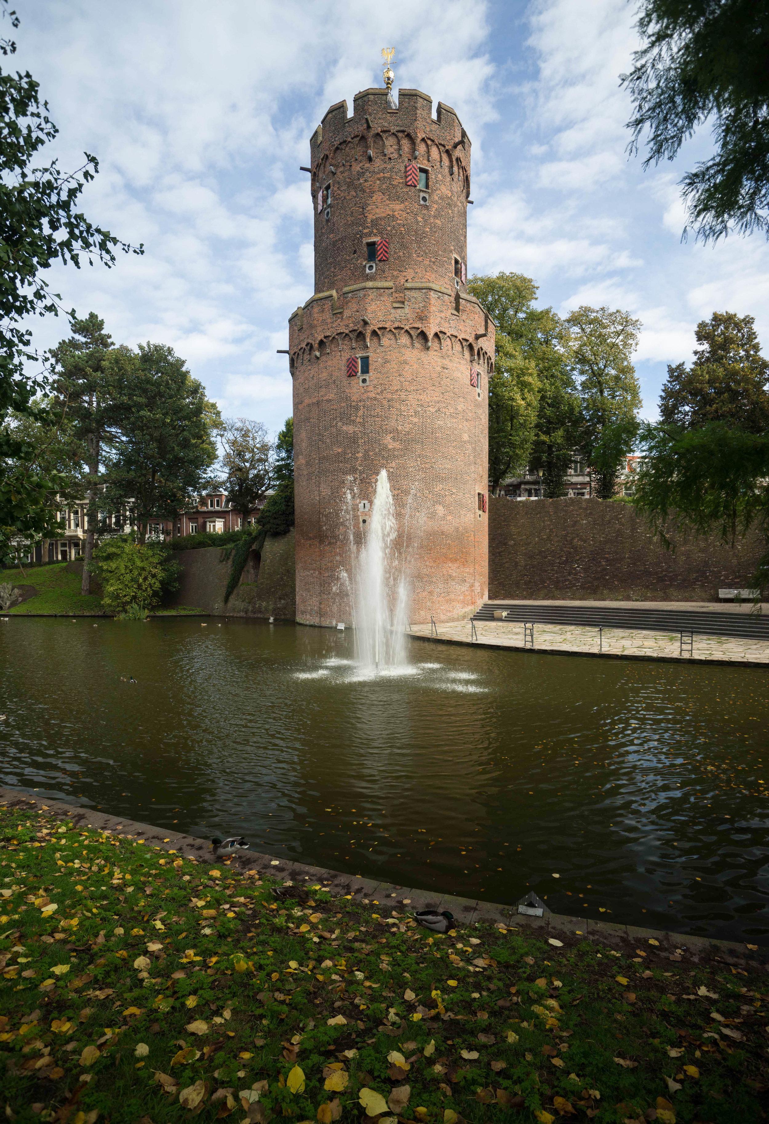 Nederland 10-01-2017 Dev LR-58.jpg