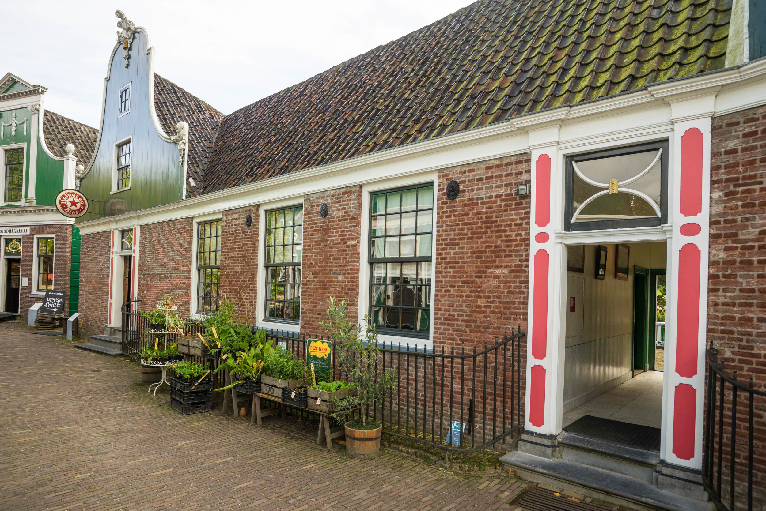Nederland 10-01-2017 Dev LR-129.jpg