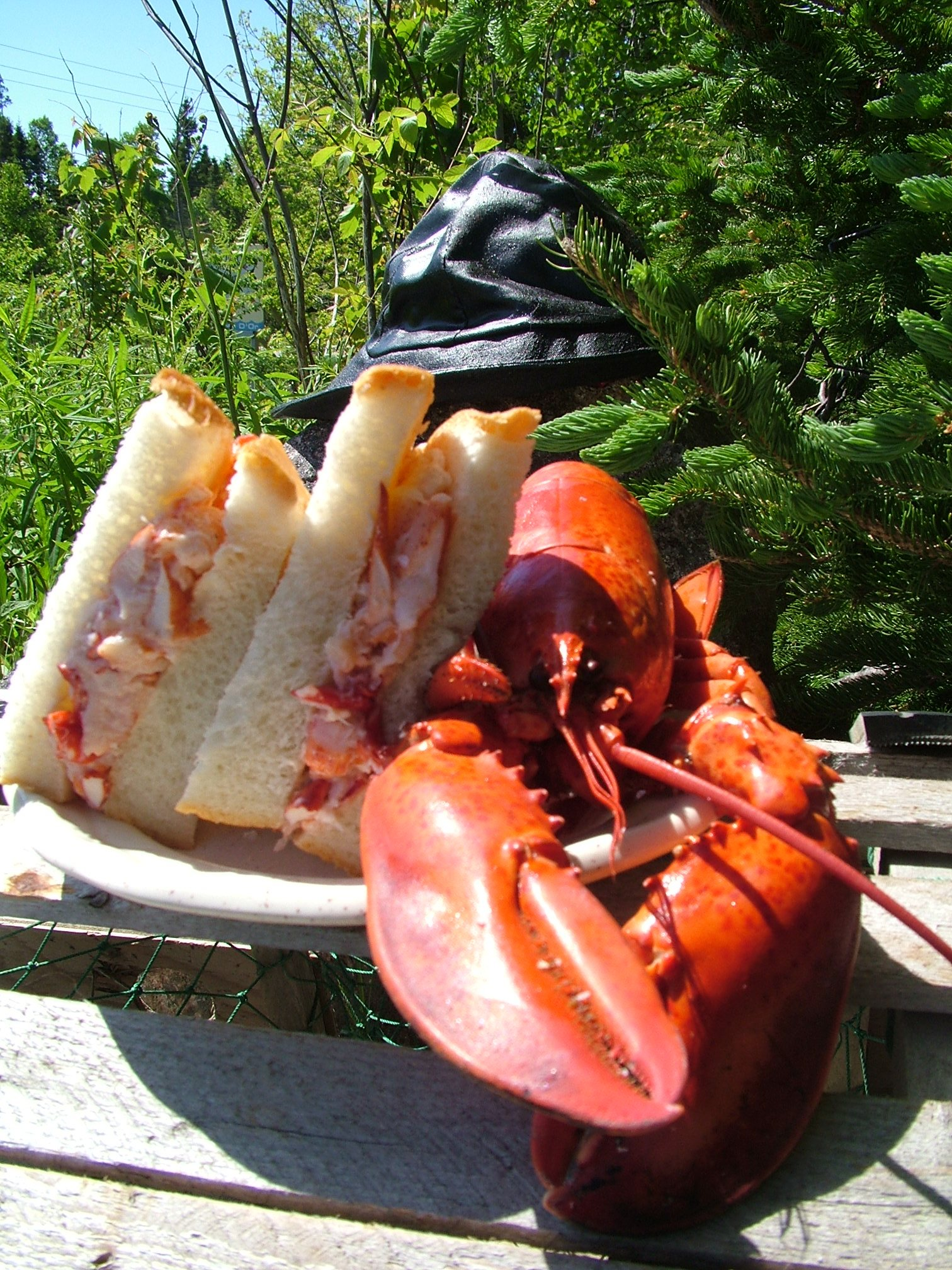 Famous Lobster Sandwiches since 1978!