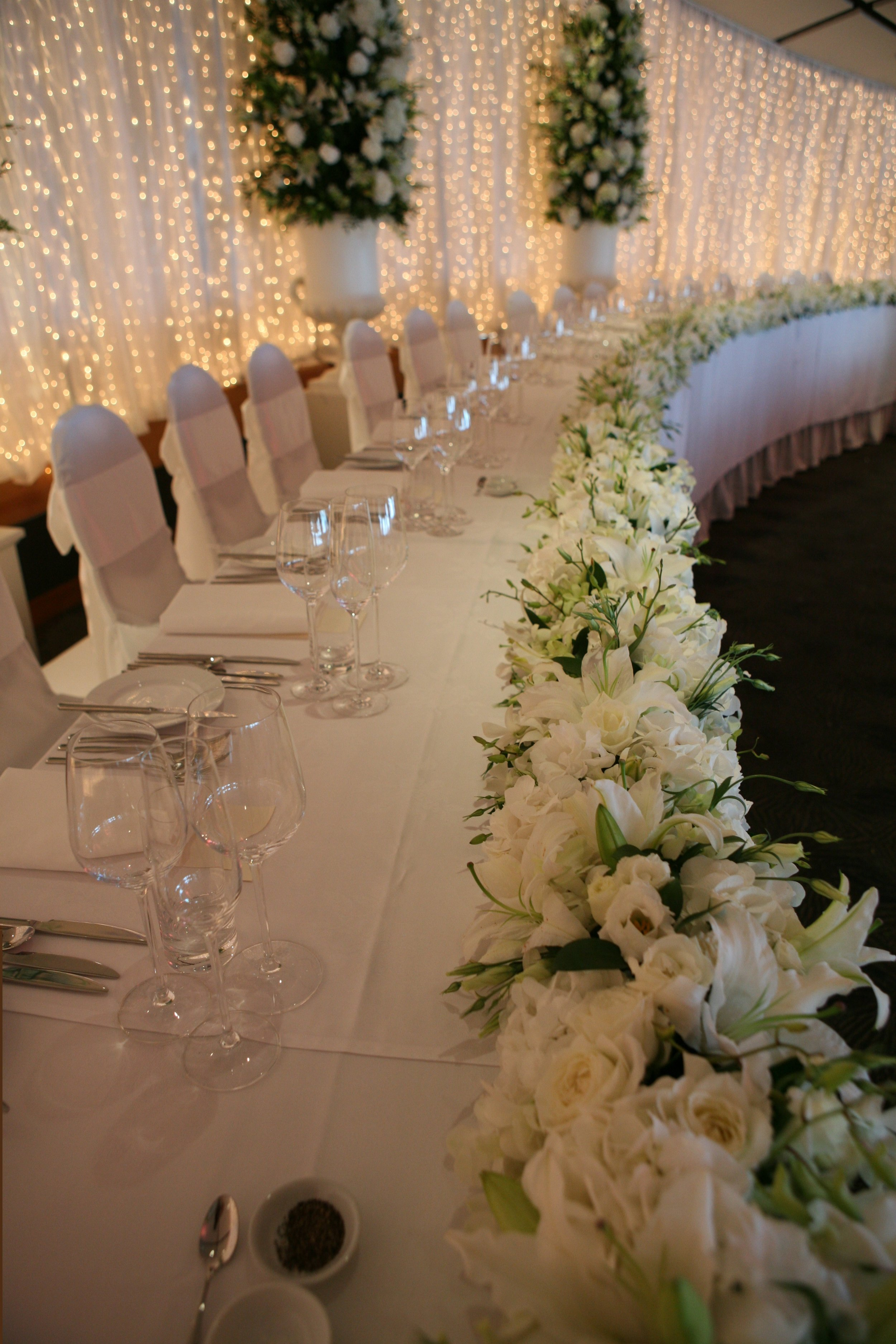 3m curtain lights with white organza
