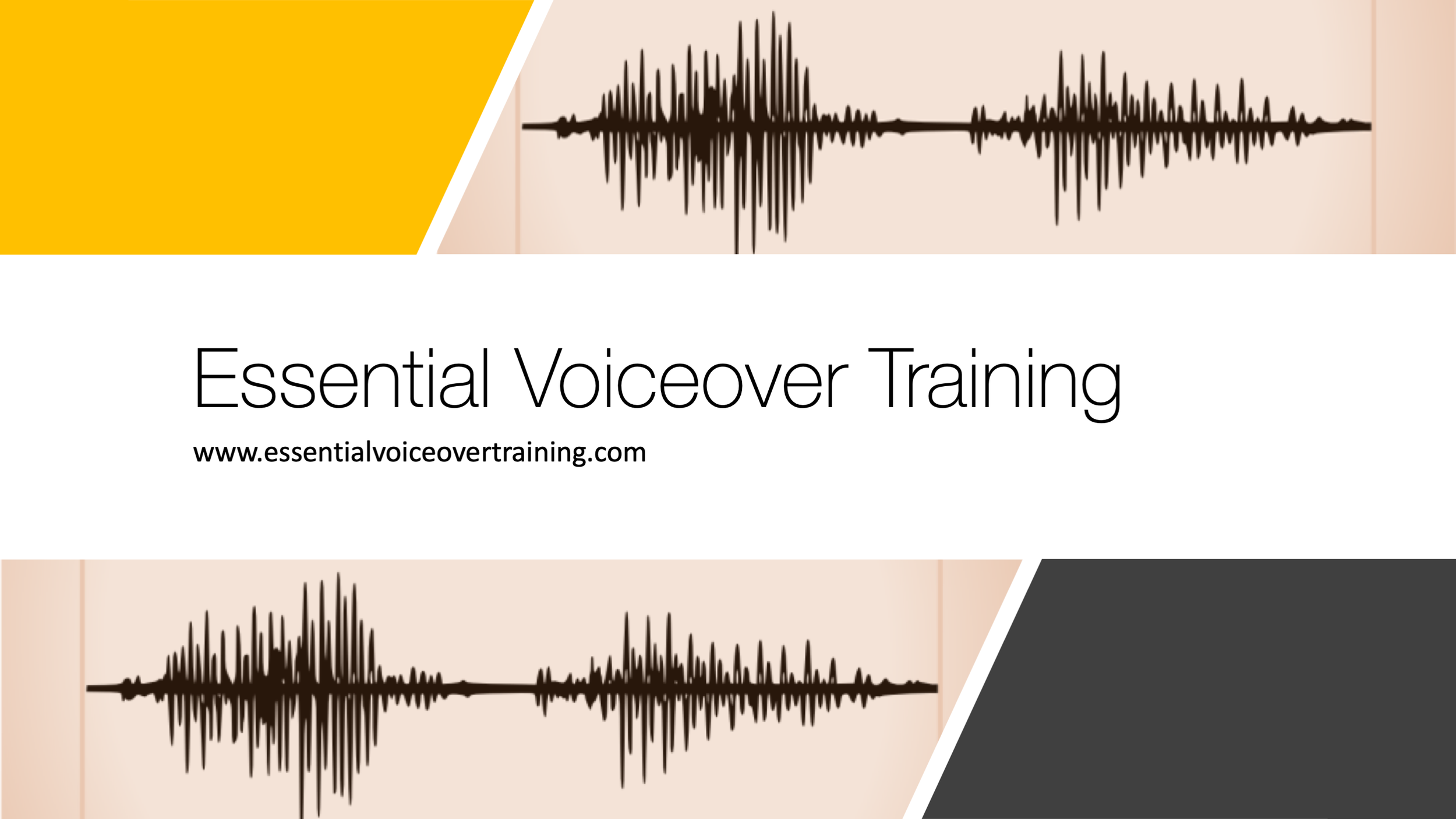 EssentialVoiceOverTraining-MainLogo.png
