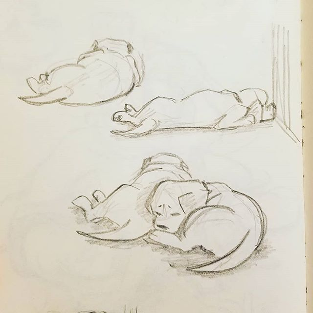 A couple puppy sketches from downtime at work!  Thank DOG for @warriorcanineconnection 's puppy cam!! I've had it up at work and it brings me eternal happiness!! Heres their website and a link to the cam!! https://warriorcanineconnection.org/ https://explore.org/livecams/warrior-canine-connection/service-puppy-cam-3  #dogs #sketches #doodles #gesturedrawing #ilovethem #lifedrawing #puppies