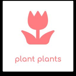 plant plants.png