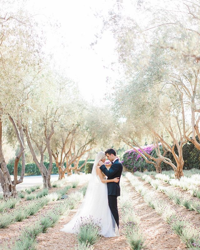 """Happy 4th wedding anniversary, my love. """"..in the midst of your presence, life softens, life sweetens, and moments grow delicately quiet as the peace and fulfillment of my heart swells to it's completeness.."""" . . Photo by @katieshuler"""