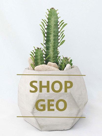 shop-geo.jpg