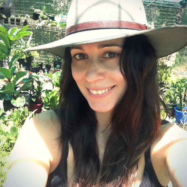 Lots of plants comin' at ya this Sunday #sunshinecoast peeps! Come say hi @sunshinecoastcollectivemarkets #coolum . . . . #noosa #plants #plantsofinstagram #succulents #indoorplants #plantstyling #queensland #australia