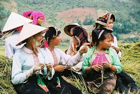 Ông đã đi và làm việc tại nhiều tỉnh vùng đồng bào dân tộc ít người của Việt Nam.