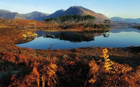 Ireland là nơi lý tưởng để thưởng thức phong cảnh rực rỡ của lá vàng lá đỏ. (Ảnh: Getty)
