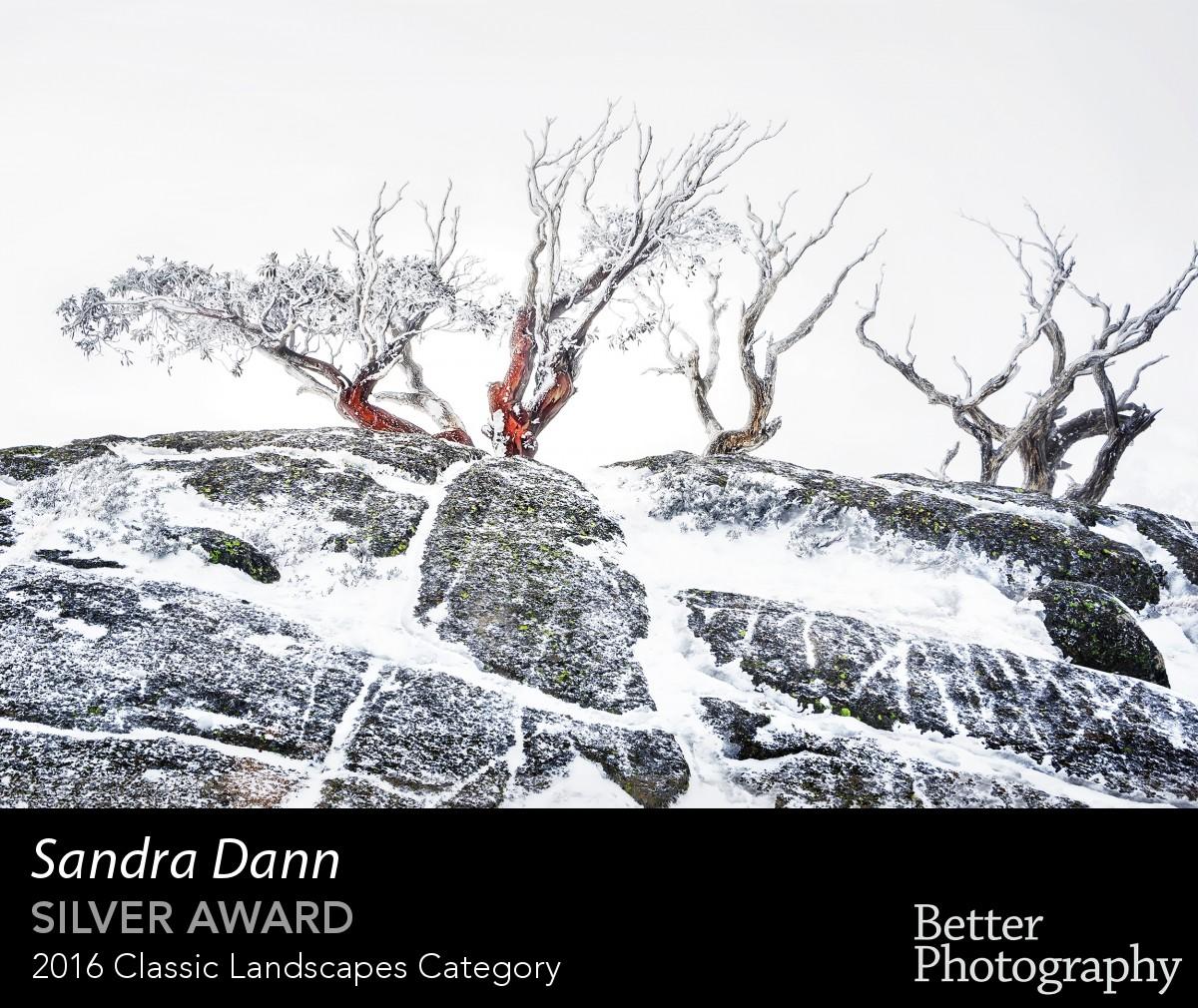 award_1085_1086_3826055466.jpg