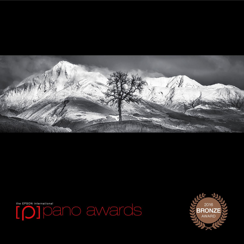 2016-Pano-Awards-Amateur-Bronze-163.jpg
