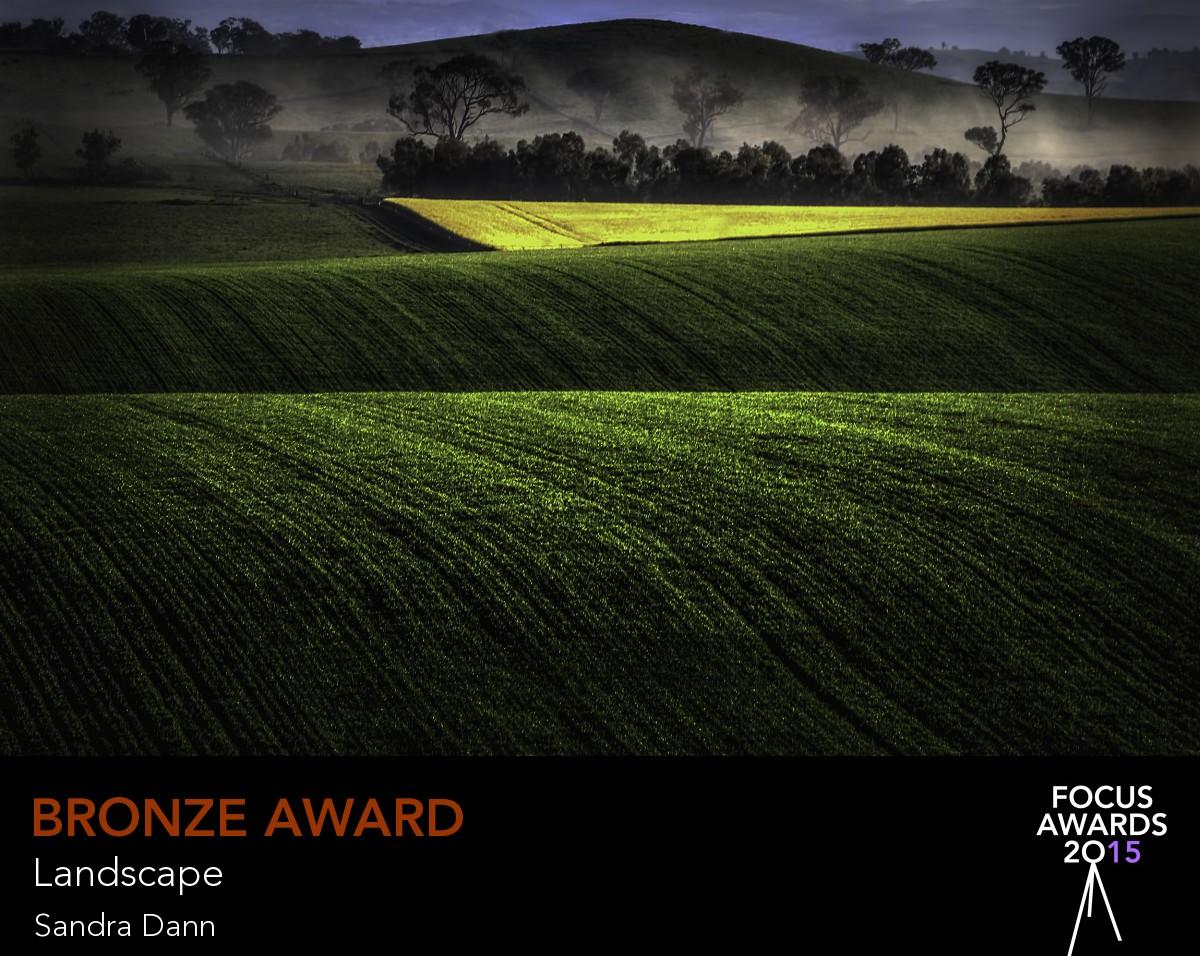 Bronze award_1249_4117903937.jpg