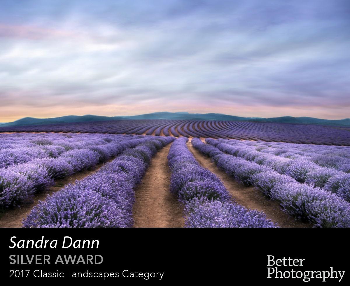 award_3012_3013_9754711431.jpg