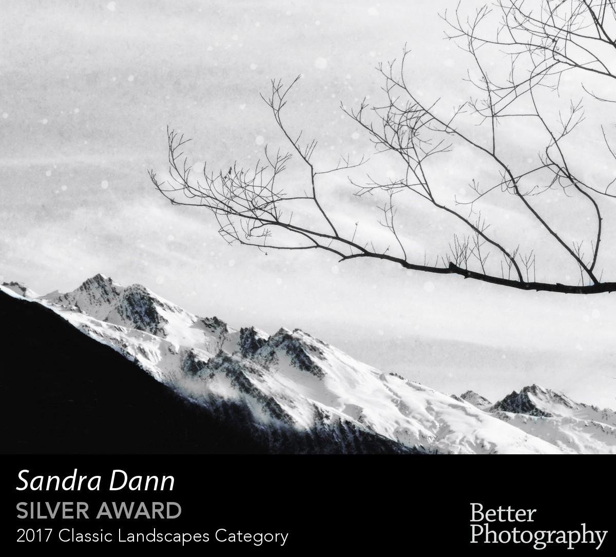 award_3017_3018_1379101066.jpg
