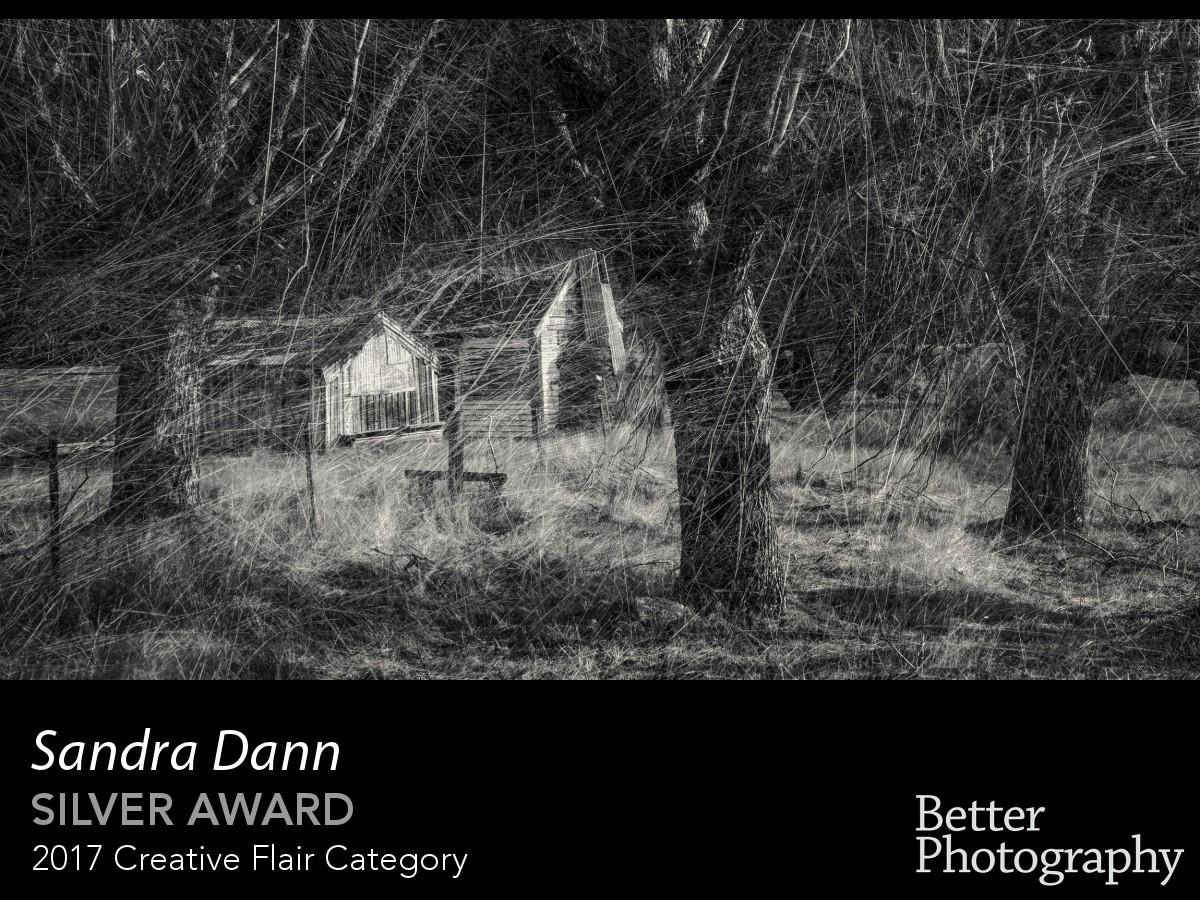 award_3018_3019_3948480724.jpg