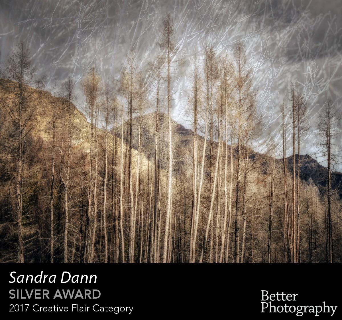 award_3087_3088_1198477405.jpg