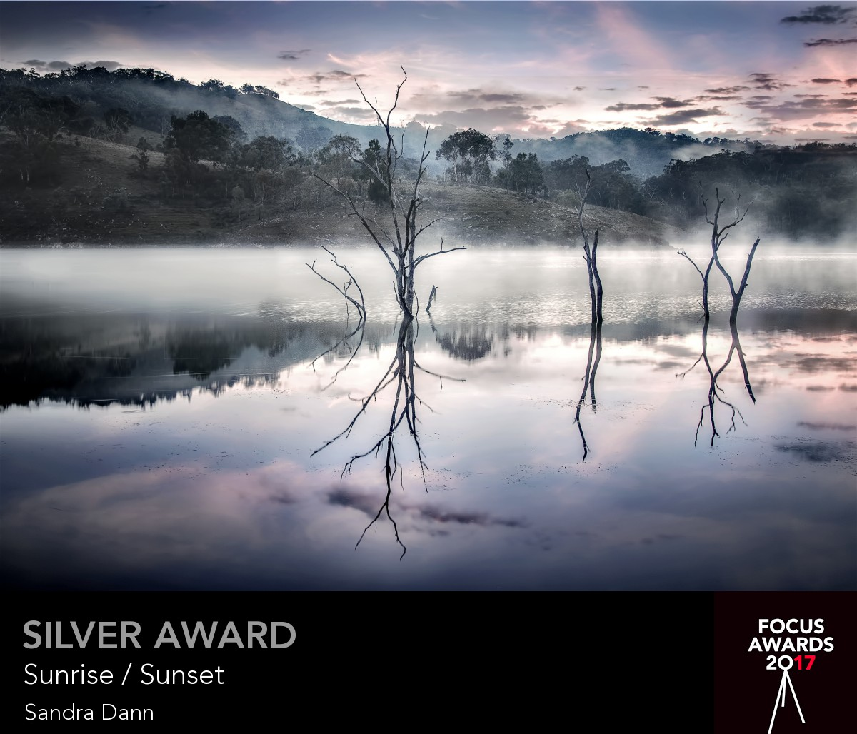 Silver award_7570_7570_7771332287.jpg