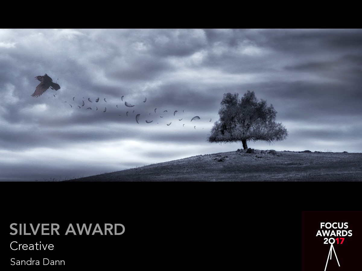 Silver award_8088_8088_3907254687.jpg